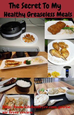 GoWise USA 8-in-1 Electric Air Fryer Review