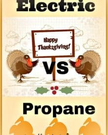 Electric Turkey Fryer Vs Propane Turkey Fryer
